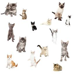 CATS MEOW 14 Wall Decals Room Decor Stickers Kittens Kitty D