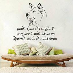 Dog Wall Vinyl Decals Quote Sticker Nursery Grooming Salon H