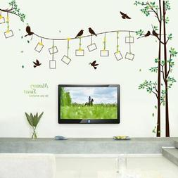 Amaonm Giant Large Family Photo Tree Wall Decal Decor Birds