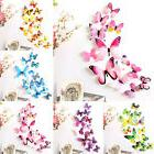 12PCS Decal Wall Stickers Home Decoration 3D Butterfly Rainb