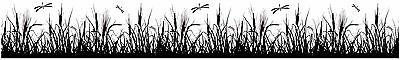 dragonfly grass wall border decals black room