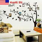 Removable Black Family Tree Wall Decal Sticker Large Vinyl P
