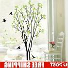 Tree Bird Quote Removable Vinyl Wall Decal Mural Home Art DI