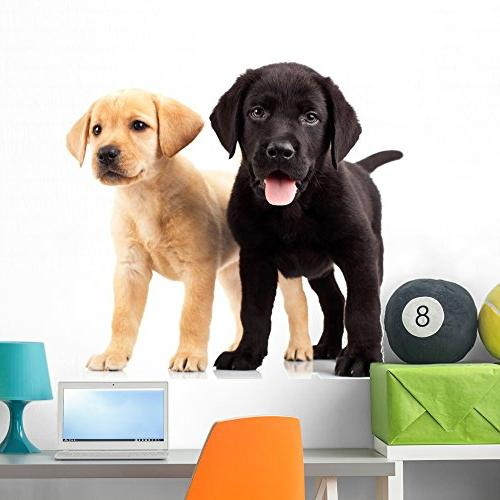 two cute labrador puppies wall